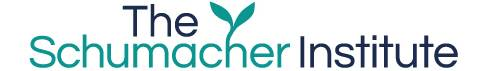 Schumacher Institute Logo